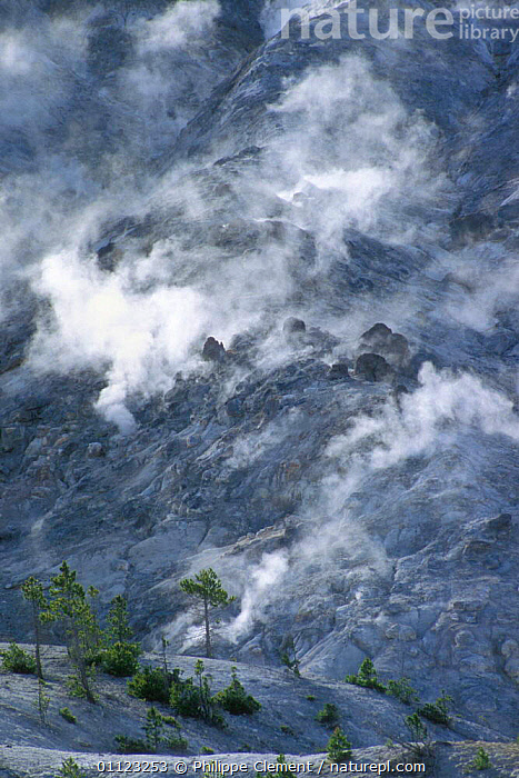 Steam vents on Roaring mountain, Yellowstone National Park, Wyoming, USA  ,  GEOTHERMAL,LANDSCAPES,NORTH AMERICA,NP,Geology,National Park,USA  ,  Philippe Clement