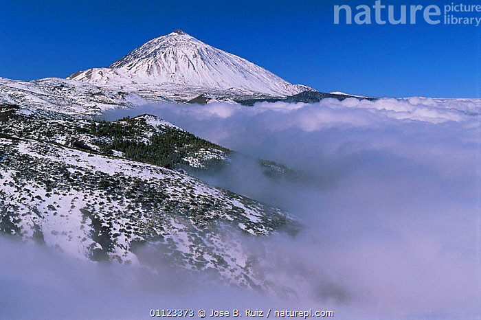 Teide volcano above clouds in snow, Teide NP, Tenerife, Canary Islands  ,  ALTITUDE,CANARIES,CANARY ISLANDS,CLOUDS,COLD,EUROPE,HIGHLANDS,LANDSCAPES,NP,PEAK,RESERVE,SNOW,SPAIN,SUMMIT,VOLCANIC,VOLCANOES,Weather,Geology,National Park  ,  Jose B. Ruiz
