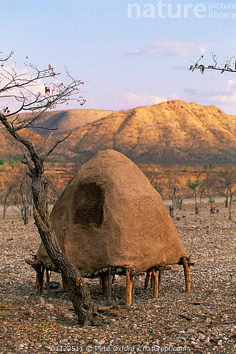 Himba grain storage hut, Kaokoland, Namibia 1999.  ,  AFRICA,CROPS,CULTURES,PEOPLE,SOUTHERN AFRICA,TRADITIONAL,TRIBES,VERTICAL  ,  Pete Oxford