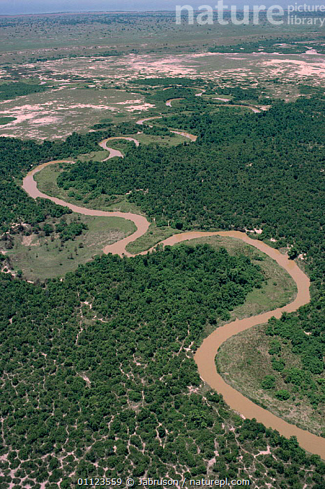 Aerial view of Rwindi river through Virunga NP, showing recent deforestation, Democratic Republic of Congo, formerly Zaire  ,  AERIALS,AFRICA,CANOPY,CENTRAL AFRICA,CLEARANCE,DEFORESTATION,LANDSCAPES,MEANDERING,NP,RIVERS,TREES,TROPICAL,TROPICAL RAINFOREST,VERTICAL,ZAIRE,Plants,National Park , Bruce Davidson  ,  Jabruson
