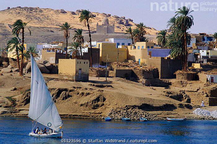 Felucca sailing on the Nile, Aswan, Egypt.  ,  BOATS,BUILDINGS,DESERTS,LANDSCAPES,RIVERS,TRAVEL,VILLAGES,NORTH-AFRICA,Africa  ,  Staffan Widstrand