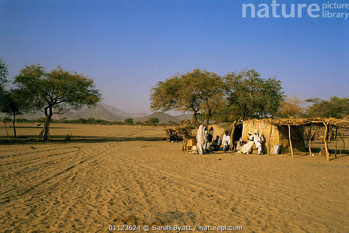 Village of Sayalt, Darfur Province, western Sudan, 1986  ,  AFRICA,CULTURES,HOMES,HOUSES,LANDSCAPES,NORTH AFRICA,PEOPLE,RURAL,SETTLMENT,TRADITIONAL,TRIBES  ,  Sarah Byatt