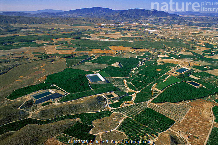 Aerial view of fields for cultivation and reservoirs, Jumilla, Murcia, Spain  ,  AGRICULTURE,CROPS,EUROPE,IRRIGATION,LANDSCAPES,PATTERNS,RESERVOIR,SPAIN,WATER  ,  Jose B. Ruiz