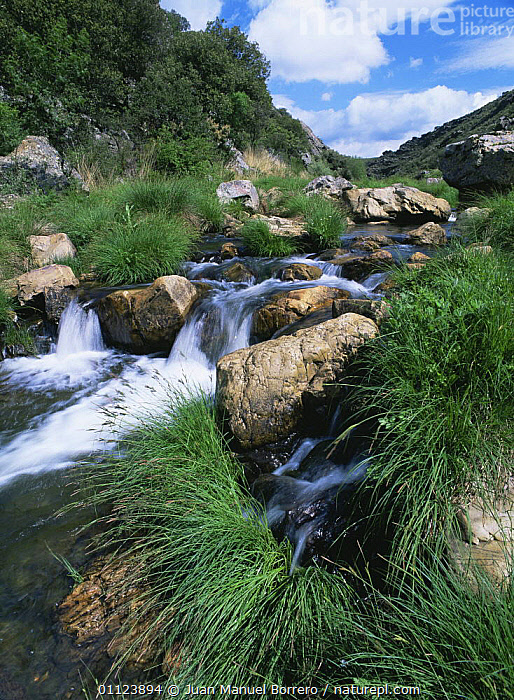 Estena river, Cabaneros NP, Spain  ,  EUROPE,HIGHLANDS,LANDSCAPES,MOUNTAINS,NP,RESERVE,RIVERS,SPAIN,STREAM,STREAMS,VERTICAL,WATER,National Park  ,  Juan Manuel Borrero