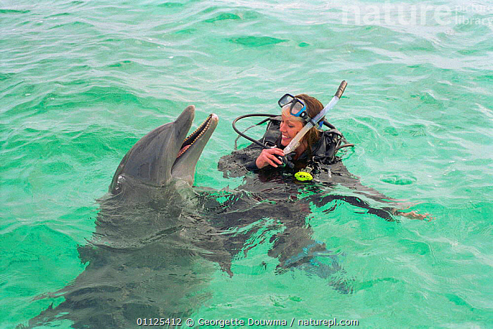 Charlotte Uhlenbroek swimming with Bottlenose dolphin, Bahamas, 2002  ,  PEOPLE,WOMAN,MARINE,SURFACE,MAMMALS,CARIBBEAN,CETACEANS,TROPICAL,West Indies  ,  Georgette Douwma