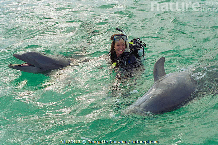 Charlotte Uhlenbroek swimming with Bottlenose dolphins, Bahamas 2002  ,  MAMMALS,PEOPLE,TROPICAL,TWO,DOLPHIN,CARIBBEAN,MARINE,CETACEANS,SURFACE,WOMAN,West Indies  ,  Georgette Douwma