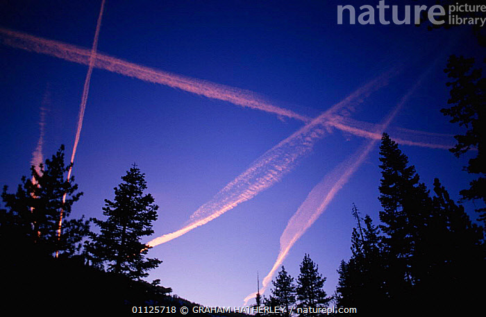Vapour trails in sky at sunset, Yosemite, California, USA  ,  AEROPLANES,NP,TRAIL,RESERVE,AIRPLANES,NORTH AMERICA,LANDSCAPES,National Park,USA  ,  GRAHAM HATHERLEY