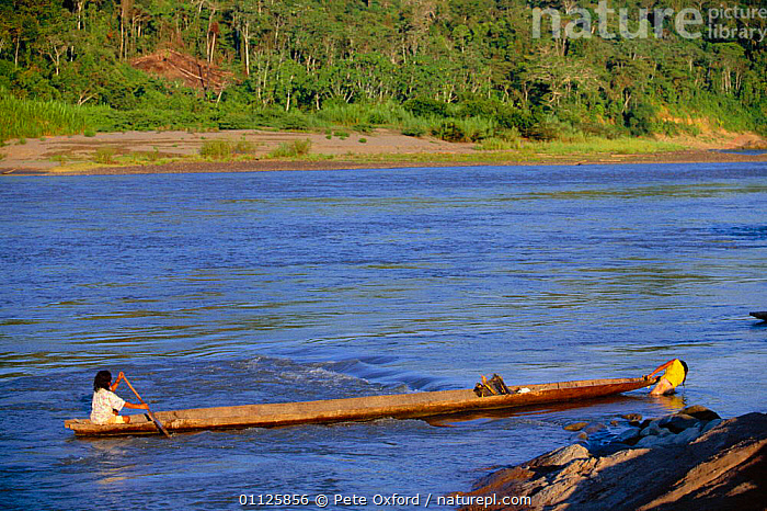 Machiguenga Indian in canoe, Timpia Community, Lower Urubamba river, Peru Amazonia  ,  BOATS,LANDSCAPES,PEOPLE,RIVERS,TRADITIONAL,TRANSPORT,TRIBES,TROPICAL RAINFOREST,SOUTH-AMERICA  ,  Pete Oxford