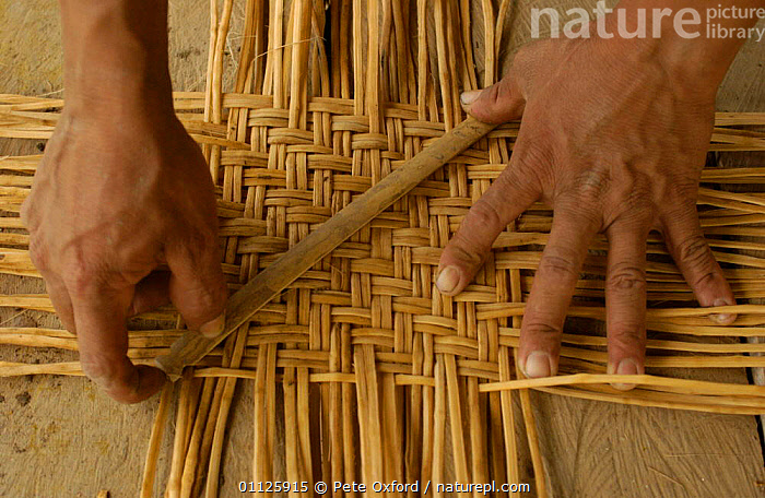 Basket making by Quechua indian, Yasuni NP, Ecuador, Amazonia  ,  CRAFTS,HANDS,LANDSCAPES,PEOPLE,TRIBES,TROPICAL RAINFOREST,WEAVING  ,  Pete Oxford