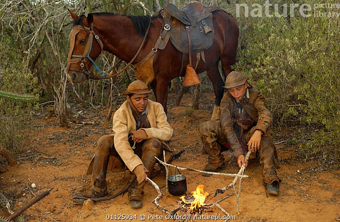 Brazilian 'Vaquieros' cowboys at camp fire, Caatinga, Piaui State, NE Brazil  ,  CAMPING,COOKING,FLAMES,HORSE,HORSES,LANDSCAPES,MEN,PEOPLE,TRADITIONAL,TWO,SOUTH-AMERICA  ,  Pete Oxford