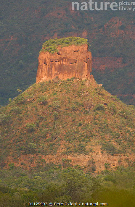 Cerrado landscape, Piaui state, Brazil  ,  LANDSCAPES,ROCK FORMATIONS,VERTICAL,WOODLANDS,Geology,SOUTH-AMERICA  ,  Pete Oxford