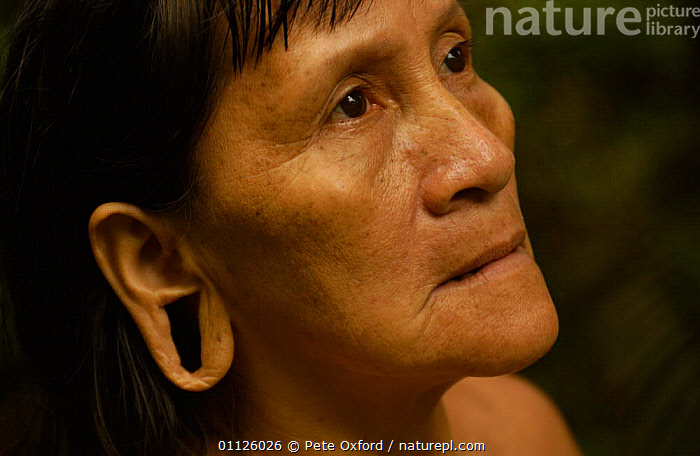 Huaorani indian woman with extended ear lobe, rainforest tribe, Napo Province, Ecuador.  ,  EARS,INDIANS,INDIGENOUS,LANDSCAPES,PEOPLE,PORTRAITS,TRIBES,TROPICAL RAINFOREST  ,  Pete Oxford