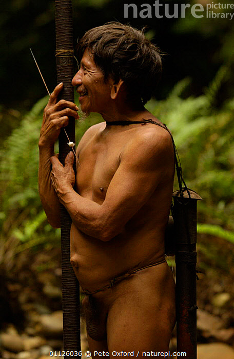 Huaorani indian man with blow gun, indigenous rainforest tribe, Napo Province, Ecuador.  ,  HUNTING FOOD,INDIANS,LANDSCAPES,PEOPLE,PORTRAITS,TRIBES,TROPICAL RAINFOREST,VERTICAL  ,  Pete Oxford