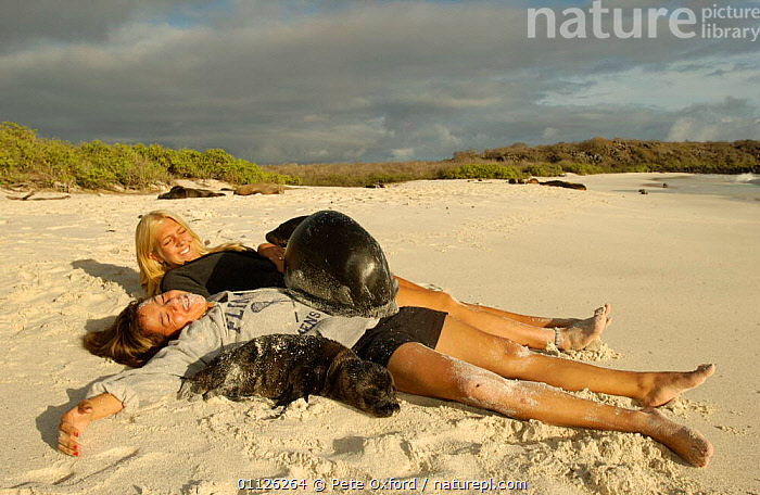 Galapagos sealions lying with tourists, Hood Is, Galapagos.  ,  BABIES,BEACHES,ECOTOURISM,FAMILIES,FRIENDSHIP,HAPPY,HUMOROUS,MAMMALS,PEOPLE,PINNIPEDS,SUNBATHING,TOURISM,WOLLEBACKE,Concepts,SOUTH-AMERICA,CARNIVORES  ,  Pete Oxford