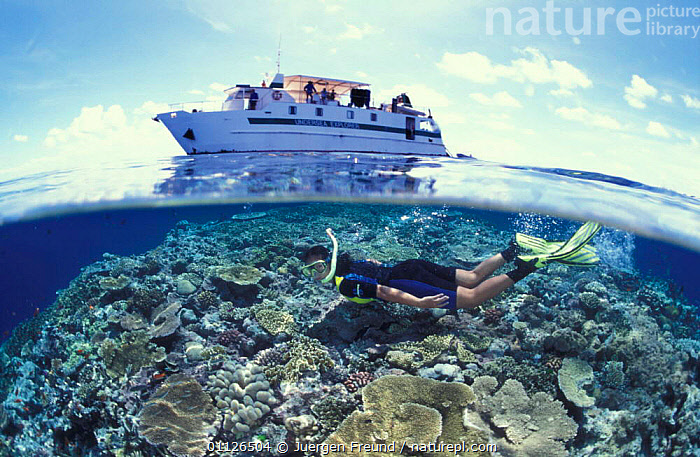 Split level of snorkeller and boat at the Great Barrier Reef, Coral Sea, Australia  ,  AUSTRALIA,BOATS,CORAL REEFS,MARINE,PEOPLE,TOURISM,TROPICAL,UNDERWATER,WATER,PURSUITS  ,  Jurgen Freund