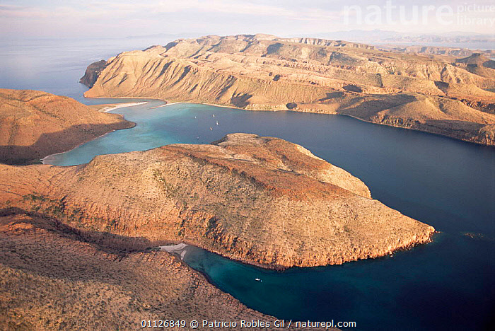 Aerial view of Espiritu Santo Is, Gulf of California, Mexico  ,  LANDSCAPES,DESERTS,COASTS,CENTRAL-AMERICA  ,  Patricio Robles Gil