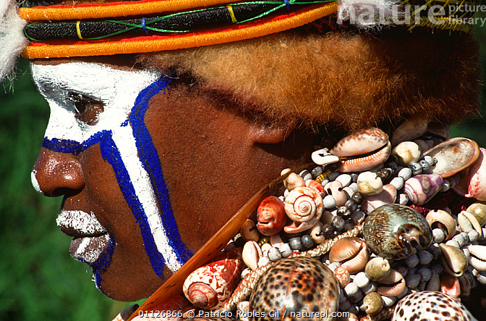 Warrior at the Mount Hagen Show, Wahgi valley, Papua New Guinea  ,  ASIA,CULTURES,FACES,HEADS,INDIGENOUS,MALES,MAN,PAPUA NEW GUINEA,PEOPLE,PROFILE,SOUTH EAST ASIA,TRADITIONAL,TRIBAL,TRIBES,WEST-AFRICA  ,  Patricio Robles Gil
