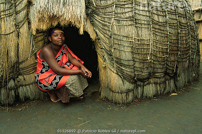 Mantenga village woman outside hut, Swaziland, Southern Africa 2001  ,  AFRICA,BUILDINGS,CULTURES,HOMES,HUTS,PEOPLE,SOUTHERN AFRICA,TRADITIONAL,TRIBES,WOMAN  ,  Patricio Robles Gil