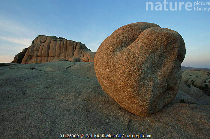 Rock formations, Joshua Tree NP, California, USA  ,  DESERTS,ERODED,NORTH AMERICA,NP,RESERVE,ROCK FORMATIONS,USA,WIND EROSION,Geology,National Park  ,  Patricio Robles Gil