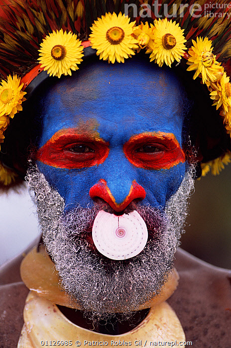 Warrior with painted face, Wahgi valley people, Mt Hagen, Papua New Guinea, 2001  ,  ASIA,FACES,PAINTS,PAPUA NEW GUINEA,PORTRAIT,PORTRAITS,LANDSCAPES,HEADDRESS,MAN,TRIBES,VERTICAL,WEST-AFRICA  ,  Patricio Robles Gil