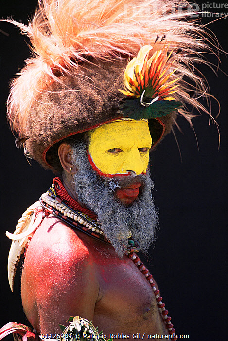 Warrior with Bird of paradise feathers in head-dress, Huli people, Papua New Guinea, 2001  ,  FACE PAINTS,DECORATED,BIRDS OF PARADISE,PORTRAIT,PORTRAITS,PAPUA NEW GUINEA,MAN,LANDSCAPES,TRIBES,VERTICAL,WEST-AFRICA  ,  Patricio Robles Gil