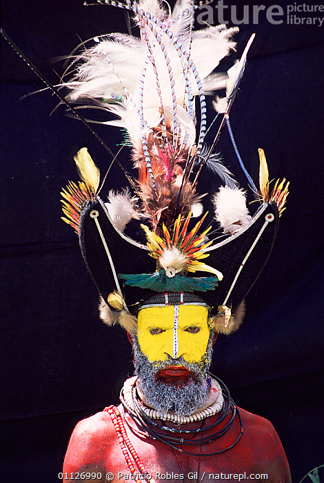Warrior with feathers in head-dress, Huli people, Papua New Guinea, 2001  ,  VERTICAL,TRIBES,LANDSCAPES,MAN,PAPUA NEW GUINEA,PORTRAITS,PORTRAIT,PAINTED,BIRD,DECORATED,FACE PAINTS,WEST-AFRICA  ,  Patricio Robles Gil