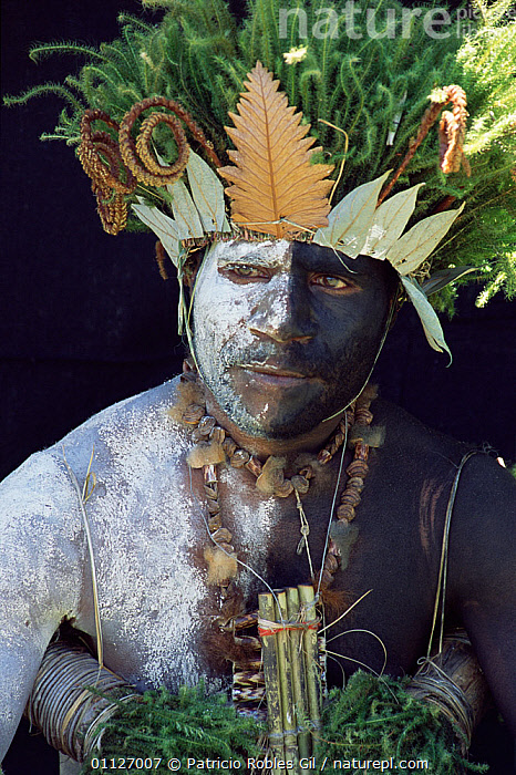 Black and white face paint and moss head-dress, Koge, Sinasina, Papua New Guinea, 2001  ,  ASIA,LANDSCAPES,MAN,PAINTED,PAPUA NEW GUINEA,PLANTS,PORTRAITS,TRIBES,VERTICAL,WEST-AFRICA  ,  Patricio Robles Gil
