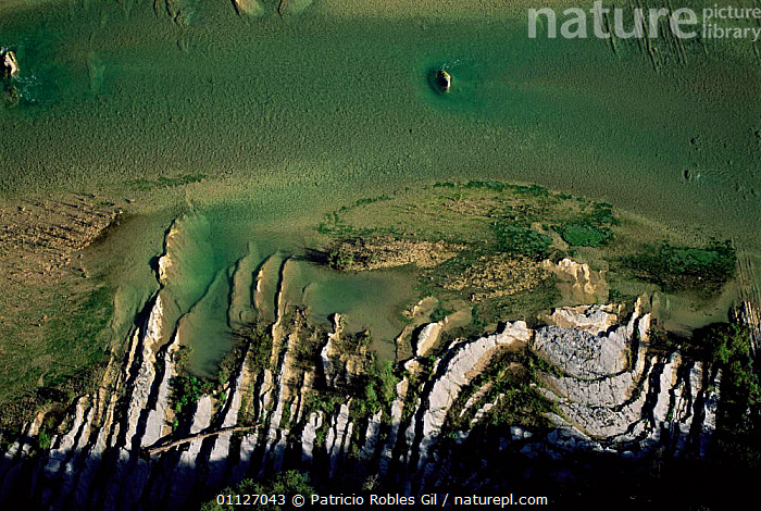 Aerial view of Guayalejo river, Tamaulipas, Mexico  ,  RIVERS,LANDSCAPES,CENTRAL-AMERICA  ,  Patricio Robles Gil