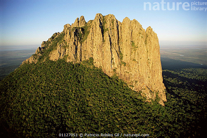 El Bernal Peak protected area, Tamaulipas, Mexico  ,  FOREST,PEAKS,LANDSCAPES,ROCK FORMATIONS,WOODLANDS,Geology,CENTRAL-AMERICA  ,  Patricio Robles Gil