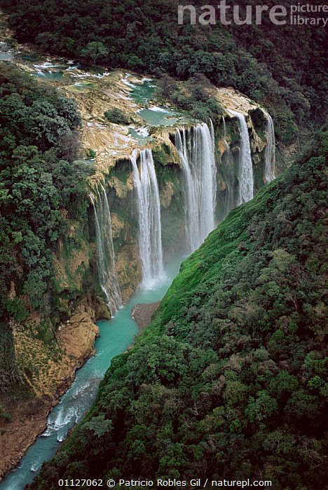 Aerial view of Tamul waterfall, Huasteca Potosina, Mexico  ,  VERTICAL,WATERFALLS,RIVERS,AERIALS,LANDSCAPES,CENTRAL-AMERICA  ,  Patricio Robles Gil