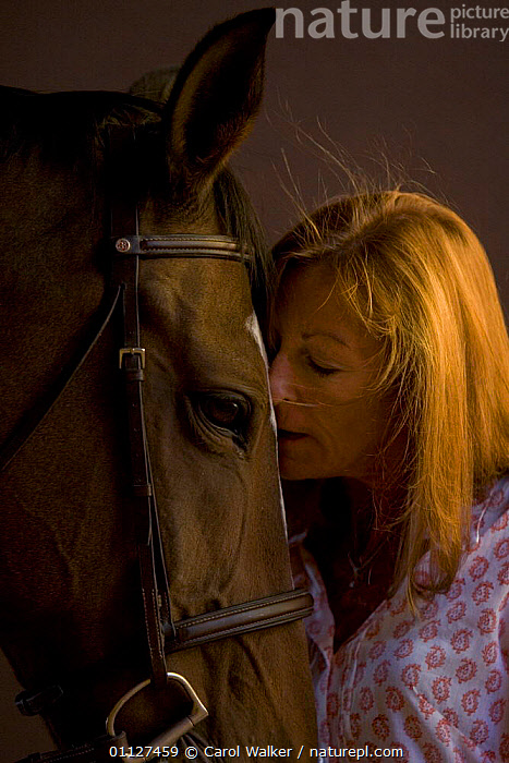 Woman with Dutch warmblood horse, NM, USA. Model released., AFFECTION,FRIENDSHIP,HEADS,HORSES,MAMMALS,NORTH AMERICA,PEOPLE,PERISSODACTYLA,PETS,USA,VERTICAL,Concepts,Equines, Carol Walker