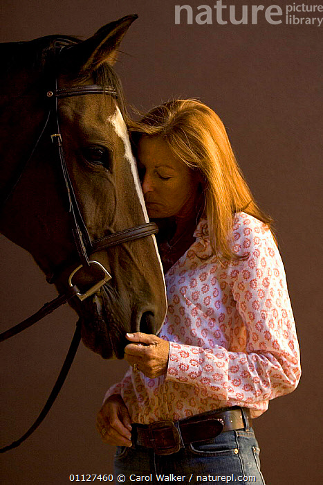 Woman with Dutch warmblood horse, NM, USA. Model released., AFFECTION,FRIENDSHIP,HORSES,MAMMALS,NORTH AMERICA,PEOPLE,PERISSODACTYLA,PETS,USA,VERTICAL,Concepts,Equines, Carol Walker