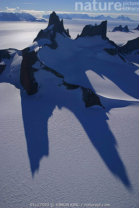 Nanutaks, mountains projecting above ice field, Dronning Maudland, Antarctica., LANDSCAPES,PEAKS,SHADOW,SNOW,VERTICAL, SIMON KING