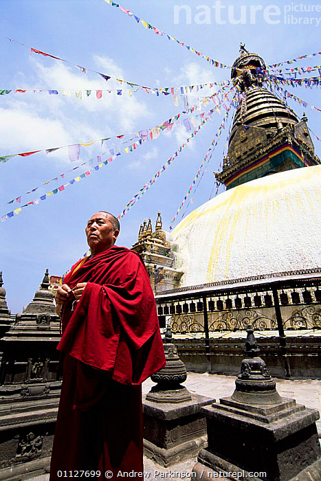 Buddhist monk prays at the monkey temple, Swayambhunath, Kathmandhu, Nepal, TEMPLES,VERTICAL,RELIGION,PEOPLE,FLAGS,LANDSCAPES,CITIES,ASIA,BUDDHISM,BUILDINGS,INDIAN-SUBCONTINENT, Andrew Parkinson