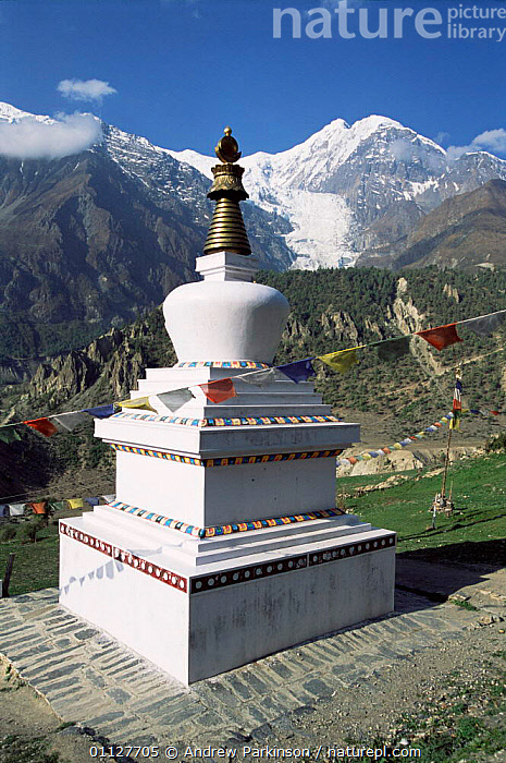 Buddhist shrine, Gompa, high in hills above Manang with Gangapurna behind, Nepal, VERTICAL,MOUNTAINS,BUDDHISM,LANDSCAPES,RELIGION,HIMALAYAS,ASIA,INDIAN-SUBCONTINENT, Andrew Parkinson