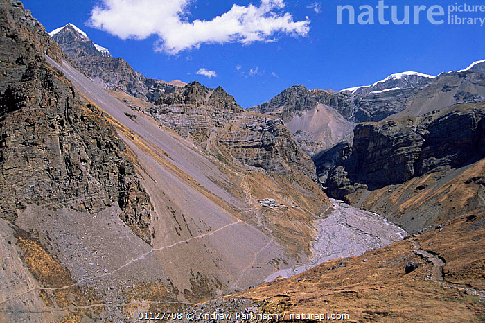 Tiny settlement of Thorung Pedi at 4420m on Annapurna circuit, Nepal, Thorung La pass behind, MOUNTAINS,LANDSCAPES,SCREE,TREK,VILLAGES,HIMALAYAS,CLIFFS,BUILDINGS,ASIA,Geology,INDIAN-SUBCONTINENT, Andrew Parkinson