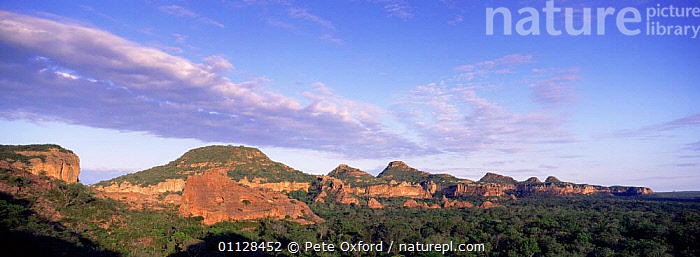 Sandstone cliffs, nesting site for Red & green macaws, Cerrado, Brazil  ,  LANDSCAPES,PANORAMIC,SOUTH-AMERICA  ,  Pete Oxford