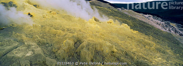 Sulphur fumeroles inside crater of Sierra Negra volcano Isabela Is, Galapagos  ,  PANORAMIC,LANDSCAPES,ISABELLA,ACTIVITY,GEOTHERMAL,GREEN,VOLCANOES,STEAM,Geology,SOUTH-AMERICA  ,  Pete Oxford