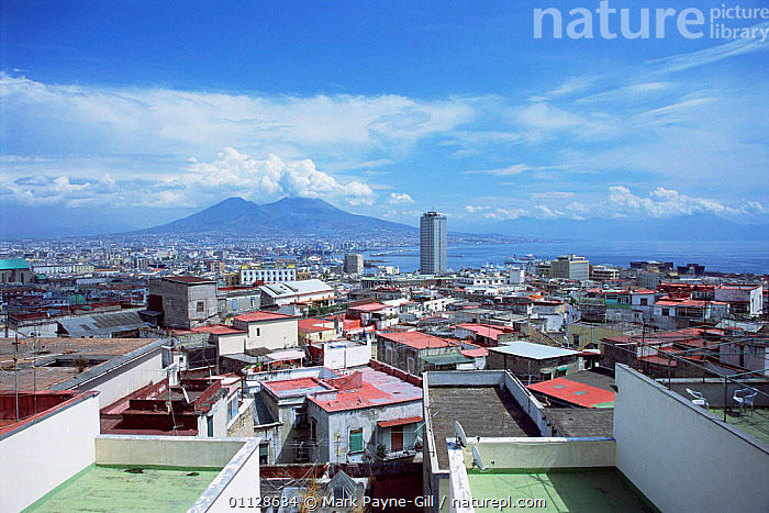 Naples city with Mount Vesuvius in background, Italy. 2003, CITIES,COASTS,BUILDINGS,VOLCANOES,LANDSCAPES,ROOFS,Geology,Europe, Mark Payne-Gill