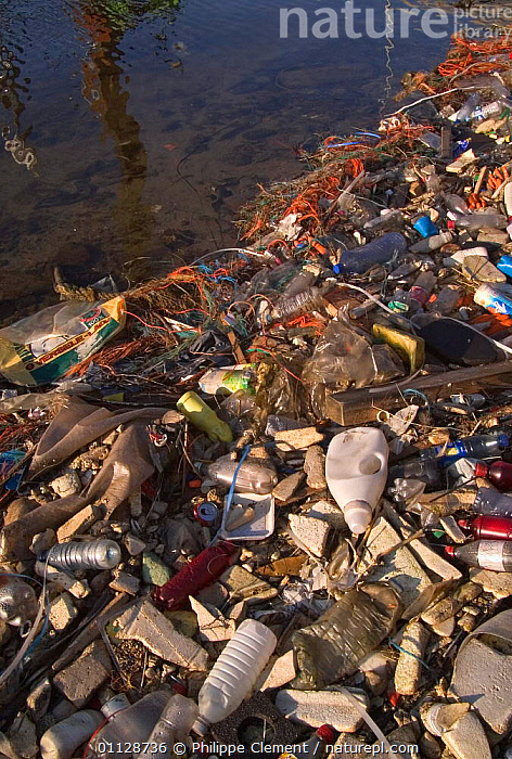 Plastic bottles and other rubbish littering waterways, Zeebrugge, Belgium  ,  POLLUTION,LANDSCAPES,VERTICAL,REFUSE,RIVERS,WATER,Europe  ,  Philippe Clement