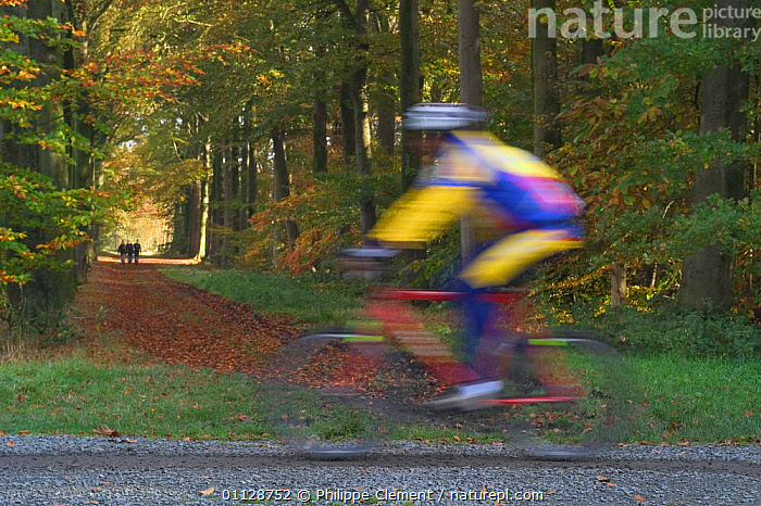 Mountain bicycle riding through woodland, Ghent, Belgium, WOODLANDS,CYCLING,ACTIVITIES,LANDSCAPES,LEISURE,PASSING,PEOPLE,Europe, Philippe Clement