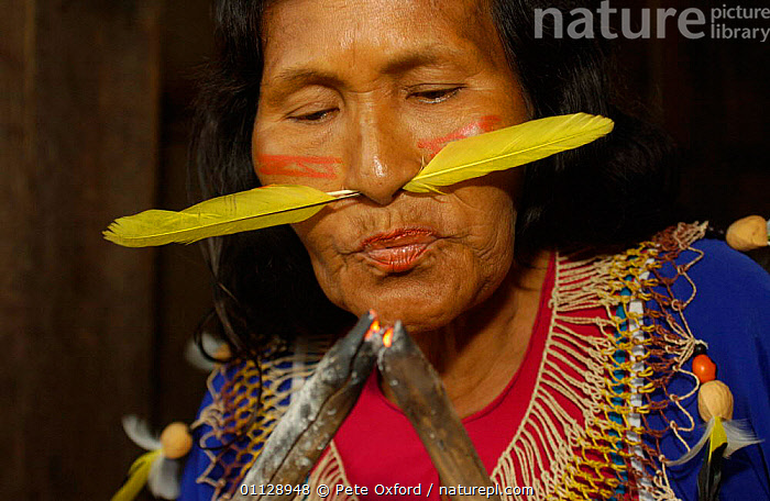 Cofan Indian with feather through nose blowing coals to light fire, Ecuador, Dureno, COMMUNITY,FEATHERS,LANDSCAPES,VERTICAL,TROPICAL RAINFOREST,TRIBES,TRADTIONAL,PORTRAITS, Pete Oxford
