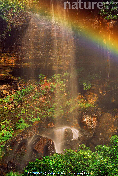 Rainbow at Acaba Vida waterfall, Bahia state, Brazil, VERTICAL,LANDSCAPES,WATERFALLS,WATER,RAINBOWS,Weather,SOUTH-AMERICA, Pete Oxford
