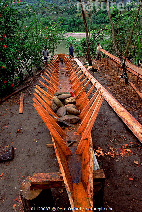 Canoe built from local timber, Amazonia, Peru  ,  TROPICAL RAINFOREST,TRADITIONAL,RIVERS,MAKING,CRAFTS,CRAFT,BOATS,SOUTH-AMERICA  ,  Pete Oxford