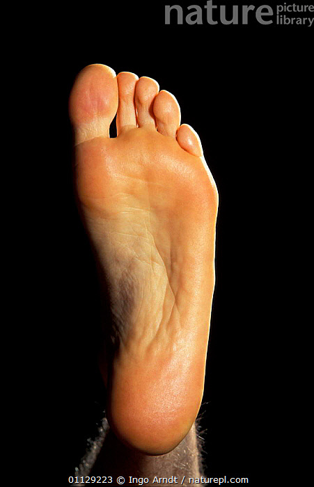 Close up of underside / sole of human foot {Homo sapiens}  ,  PEOPLE,MAMMALS,FEET,TOES,PRIMATES,CLOSE UPS,CRYPTIC  ,  Ingo Arndt
