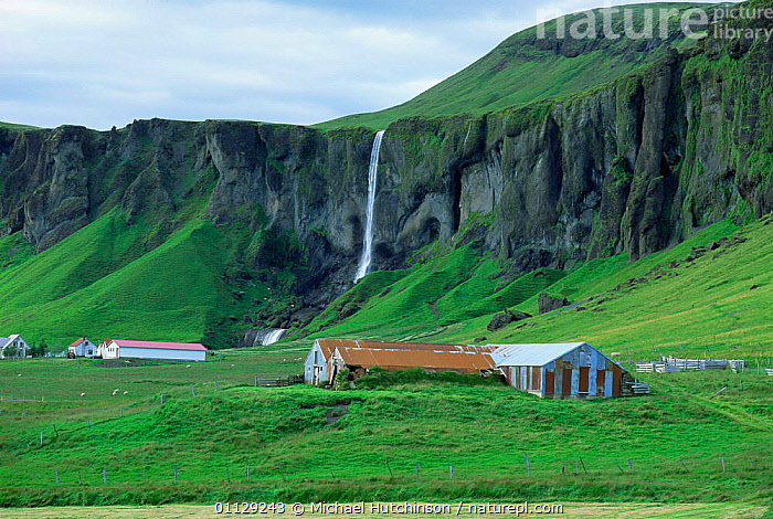 Farm buildings and waterfall near Dverghamrar, South Iceland, LANDSCAPES,WATERFALLS,CLIFFS,Geology,Europe, Michael Hutchinson