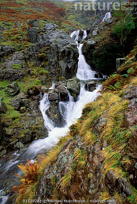 Dungeon ghyll force waterfall, Cumbria, UK., EUROPE,VERTICAL,LANDSCAPES,WATERFALLS,STREAMS,UK,United Kingdom,British,ENGLAND, Michael Hutchinson