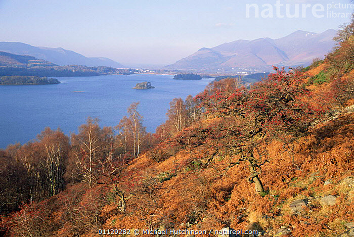 Derwent water, Lake District, Cumbria, UK.  ,  LAKES,RESERVE,LANDSCAPES,UK,EUROPE,United Kingdom,British,ENGLAND  ,  Michael Hutchinson