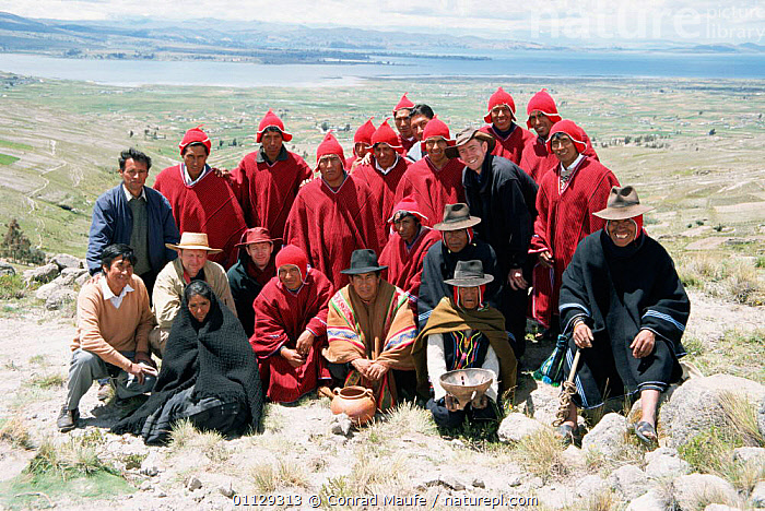 Local people at frog gathering ceremony, Lake Titicaca, Andes, Peru Lake  ,  AMPHIBIANS,CONTAINERS,THEM,LOCALS,GIVE,IT,SURFACE,TRADITIONAL,WHEN,THEN,PUT,RAIN,SMALL,TELMATOGIUS CULEUS,Weather,SOUTH-AMERICA  ,  Conrad Maufe