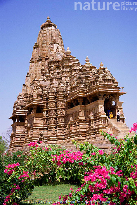 Khajaraho Temple, Madhya Pradesh, India, VERTICAL,TEMPLES,ASIA,HINDU,RELIGION,HINDUISM,BUILDINGS,LANDSCAPES,GARDENS,INDIAN-SUBCONTINENT, Conrad Maufe